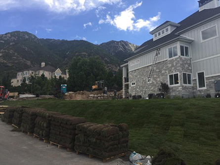 Sod Installation Riverton Utah